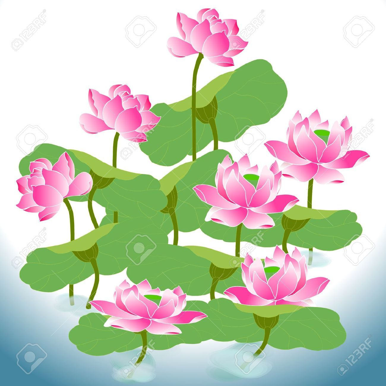 14 Awesome Green Lotus Flower Clipart Images Flowers 3 Pinterest