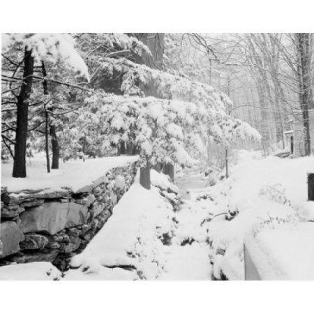 USA Vermont Montpelier Winter stream Canvas Art - (24 x 36)