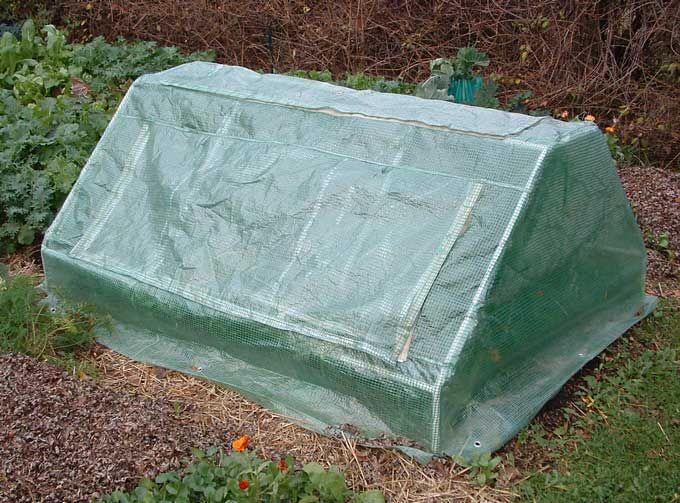 Portable Cold Frame How To Build Cold Frames Pinterest