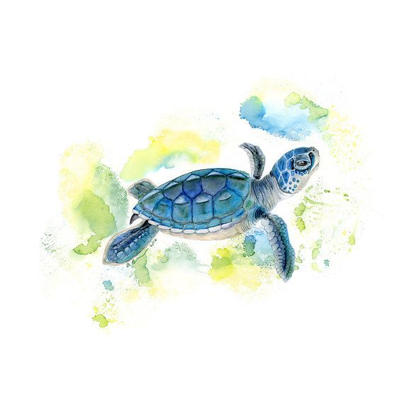 Sea Turtle Watercolor - Baby Sea Turtle - Art Print - Watercolor ...