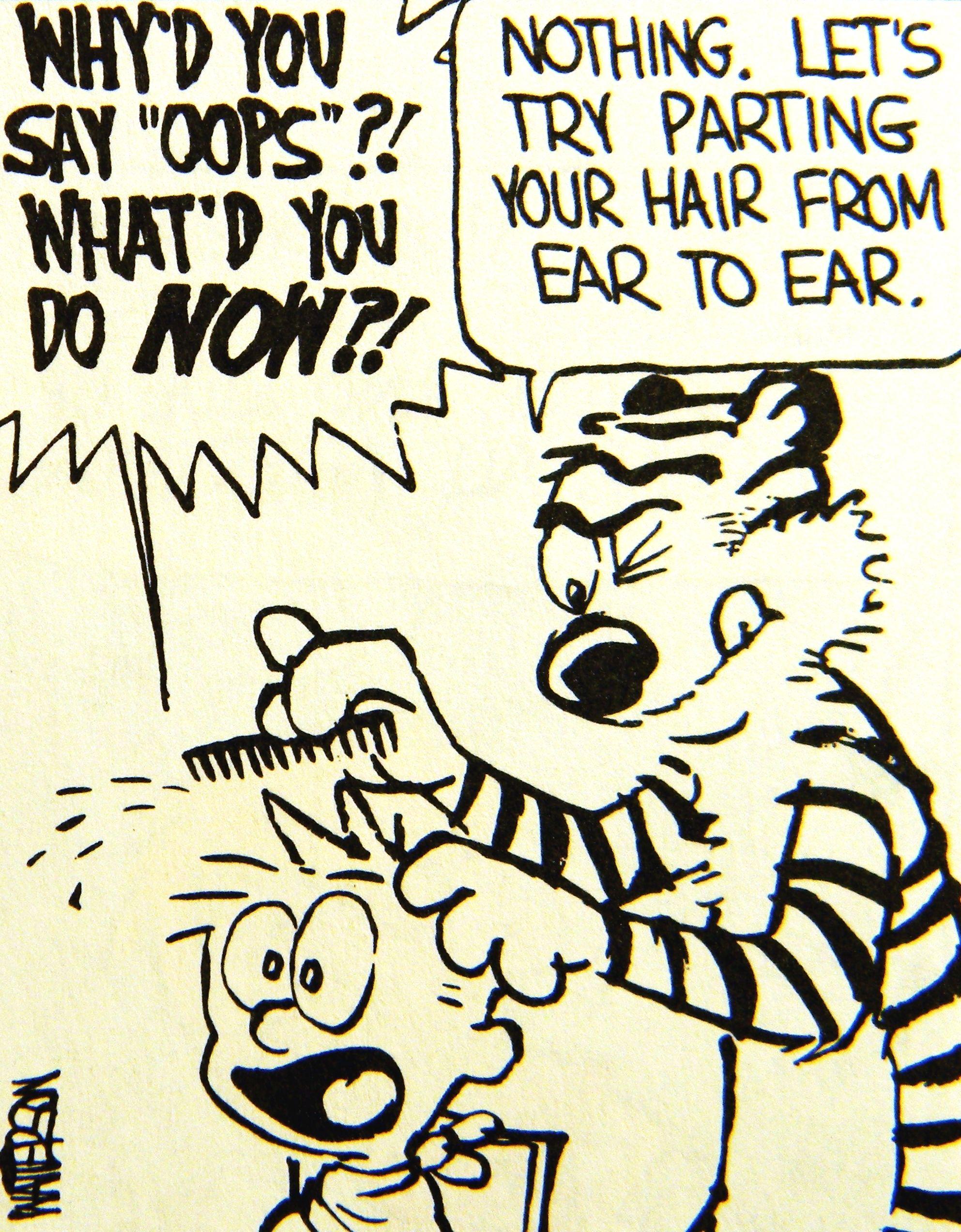 Calvin And Hobbes Hobbes Gives Calvin A Haircut Calvin And Hobbes