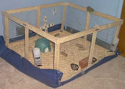 make your own guinea pig cage http