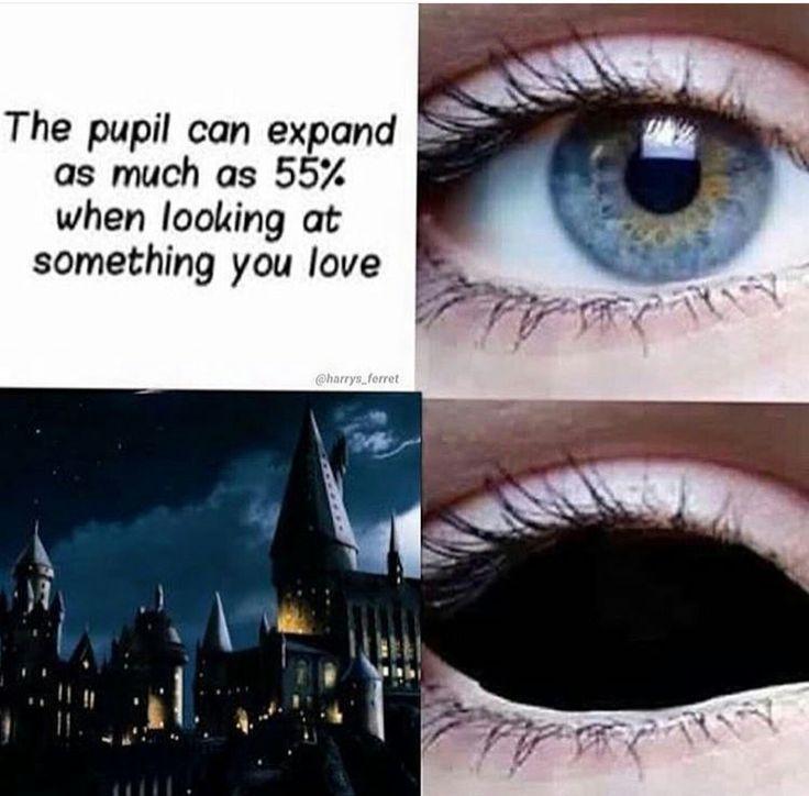 Auge Verloren