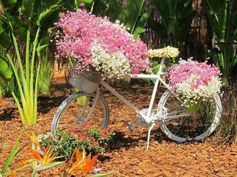 Flores pra vc
