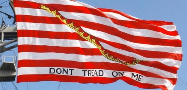 Navy Seals Ordered To Remove Dont Tread On Me Navy Jack From