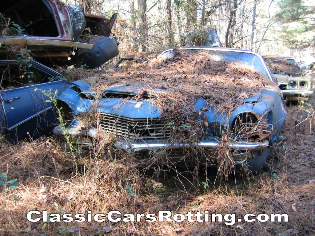 Classic Cars Rotting Junk Car Removal Get An Offer In Minutes