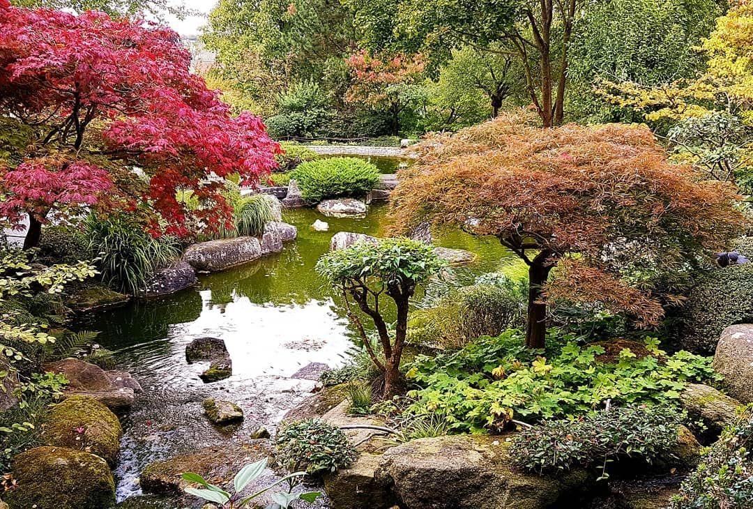 Japanischer Garten In Wurzburg Garten Japanischergarten Wurzburg Japanischer Garten Garten Japan