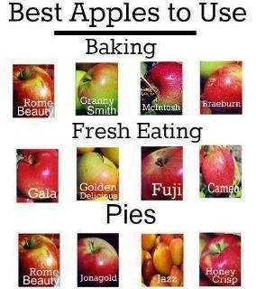 What type of apples to use for each purpose, so useful!