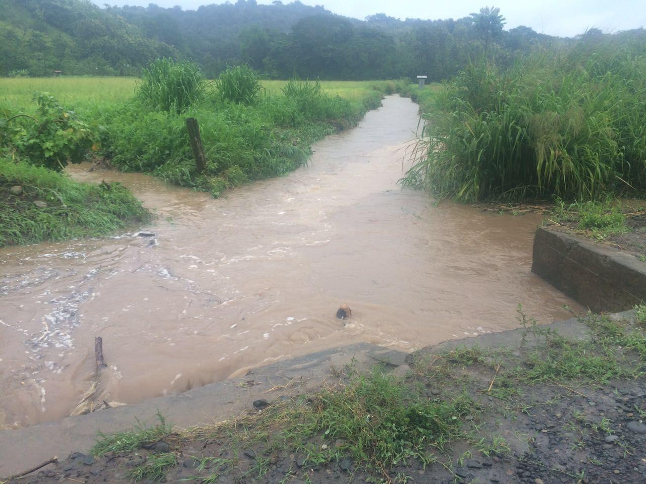 Video: Así se inundaron anoche varias casas en Paquera