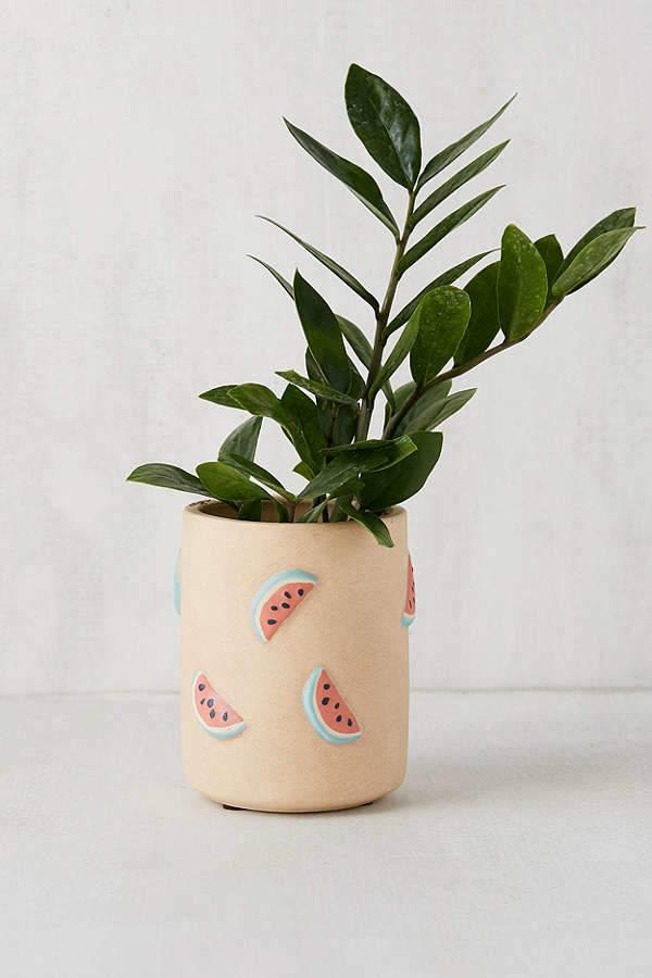 Newfoundland Planter Flower Pot Black