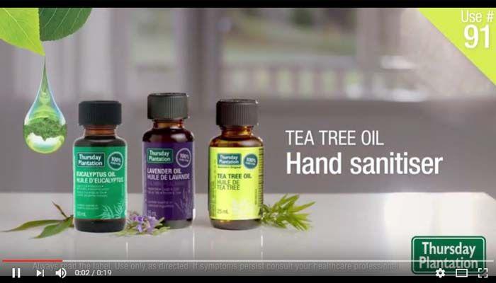 Diy Tea Tree Oil Antibacterial Hand Spray Tea Tree Oil Tea Tree