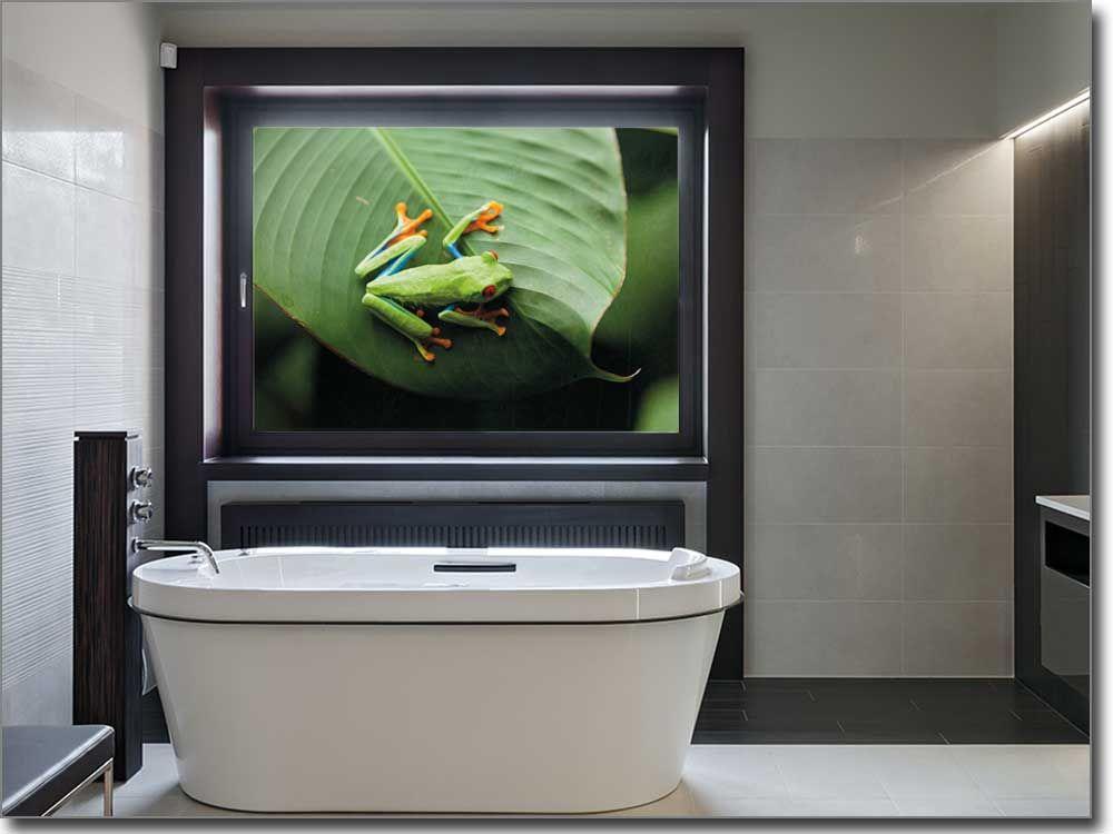 selbstklebendes Fensterbild mit grünem Frosch Glasprints mit