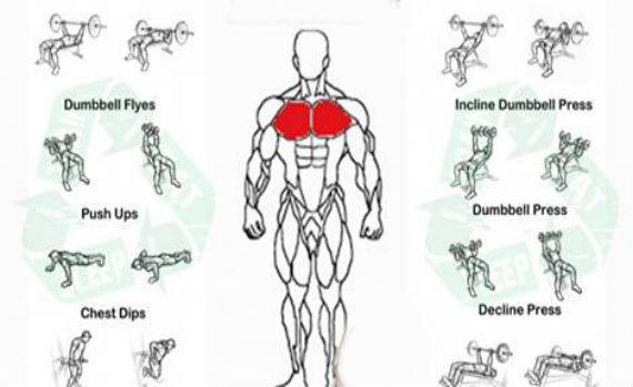 Gym Workout Routine For Men Workout Health Fitness  -7522