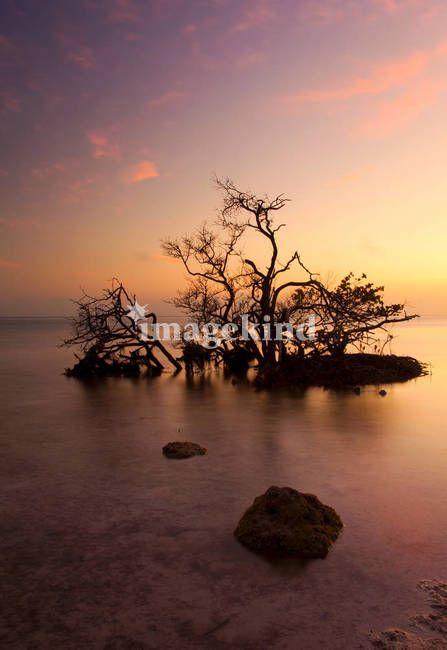 Sunset From Cudjoe Key Pictures Of The Sun Sunset Sunrise Sunset