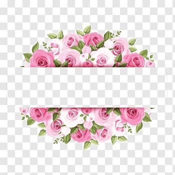 Rose Pink Flower Graphy Pink Watercolor Flower Borders Pink Rose Artworkj Free Png Flower Illustration Flower Wreath Illustration Pink Watercolor Flower