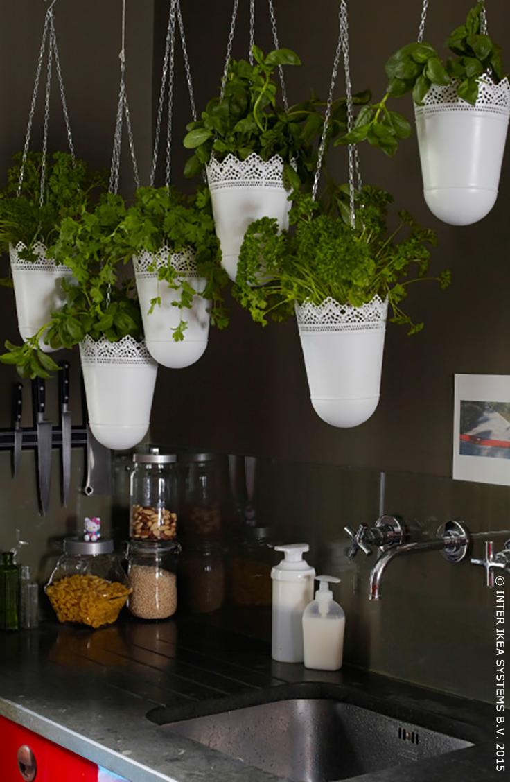 skurar plantenhanger binnen buiten ecru ecru kruidentuin kruiden en ikea. Black Bedroom Furniture Sets. Home Design Ideas