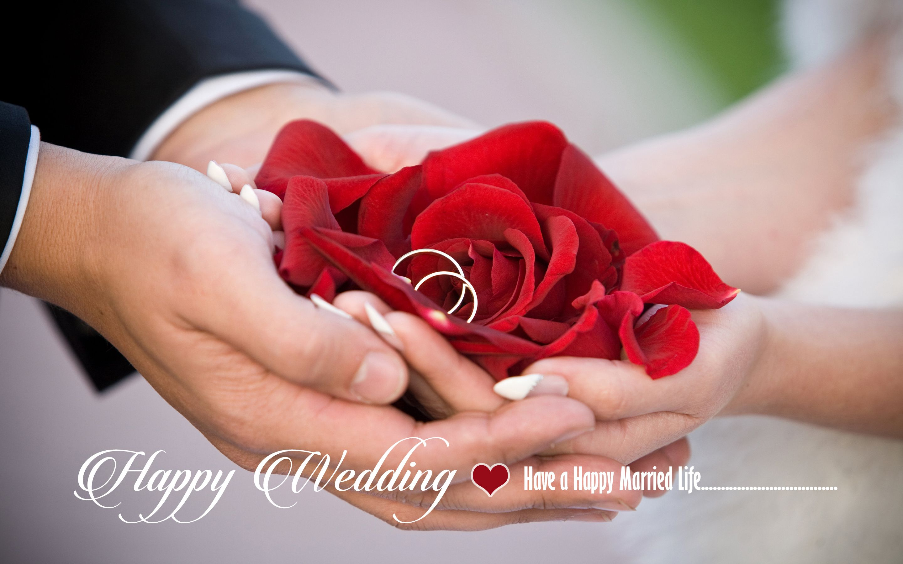 Happy Wedding Wishes HD Wallpaper Happy Wedding