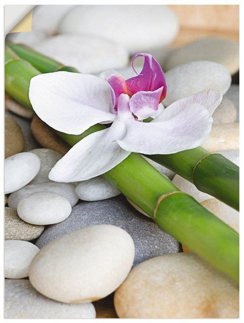 Premium Wandfolie »Andrea Haase: Zen Orchidee« #pflanzenimschlafzimmer