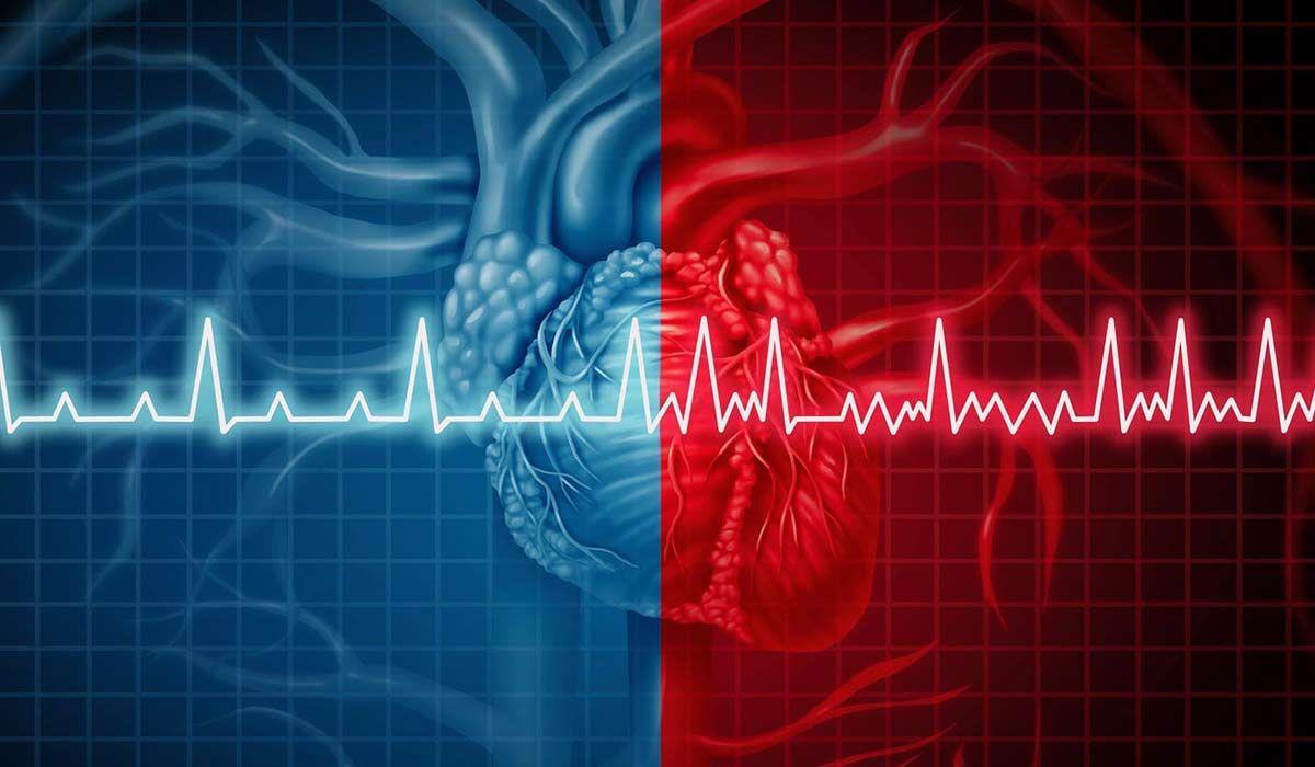 نبضات القلب الطبيعي