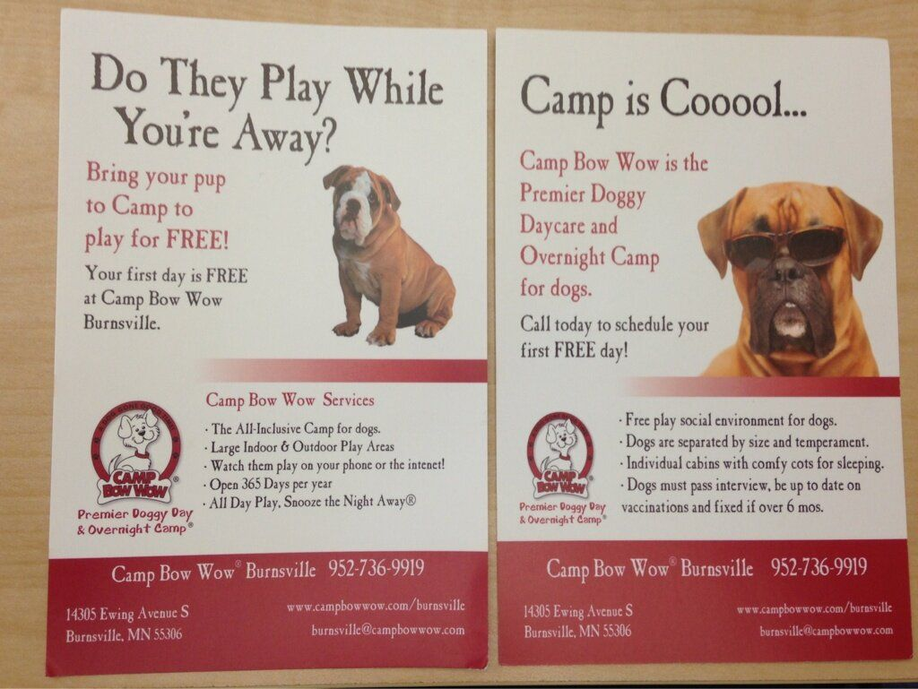 What We Offer Doggy Daycare Boarding Dog Daycare Doggie Day Camp Pet Sitting Business