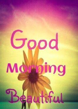 good morning my beautiful lady