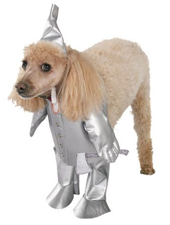 Ram Bone Dog Costume Pet Costumes Dog Halloween Costumes Dog