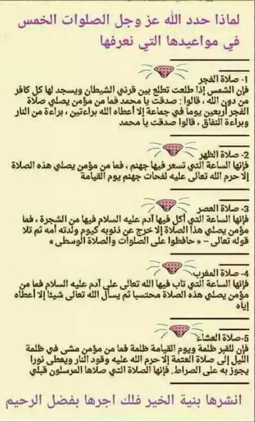 Pin By Amer On عضات Islamic Phrases Islamic Love Quotes Islam Facts