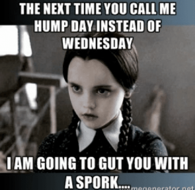 Humpday Memes To Help You Get Through Wednesday Wednesday Humor Hump Day Humor Funny Quotes