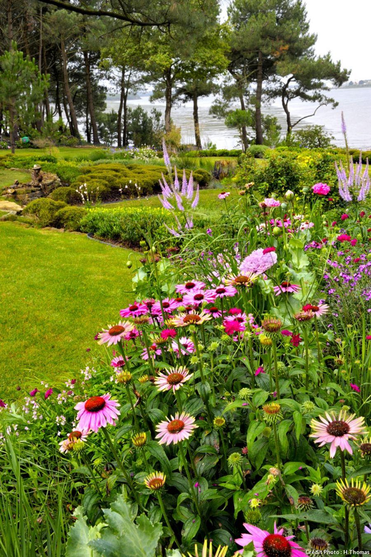 Un jardin breton d\'agapanthes et d\'hortensias bleus | Solide, Vivace ...