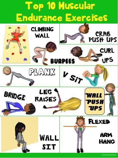 Pe Poster Top 10 Muscular Endurance Exercises Muscular Endurance