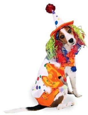 Class Clown Costume Dog Halloween Costumes Dog Halloween Pet