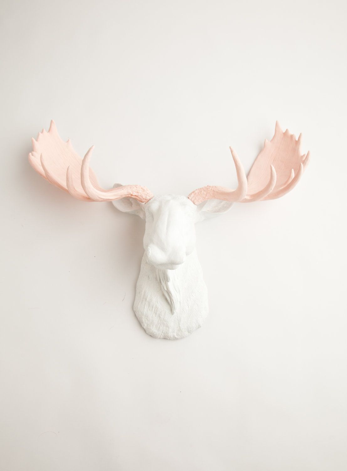 The Anita White W Cameo Pink Antlers Resin Moose Head Moose Resin White Faux Taxidermy Chic Trendy Moose Head Faux Taxidermy Moose Decor