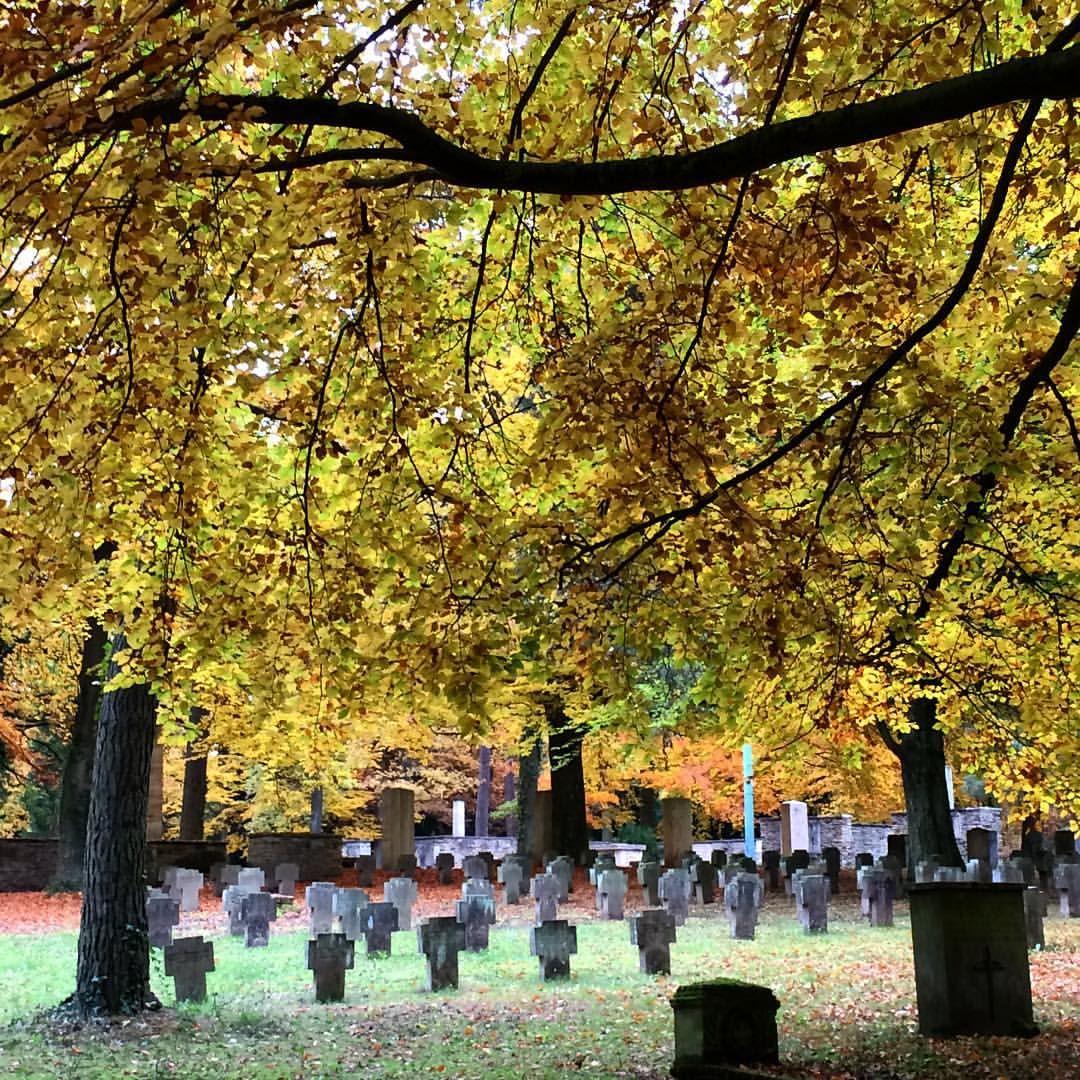 A really peaceful autumn day in #Stuttgart #Waldfriedhof #Herbst #Autumn #Friedhof #Cemetery