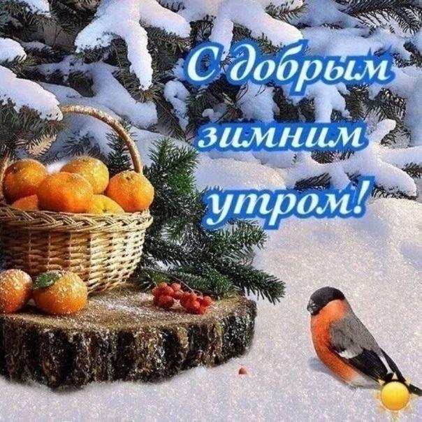 Доброе утро суббота прикольные картинки зимние, день рождения девочке