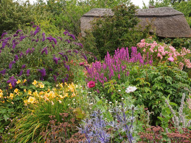 Cottage Garden Plants Gardens Pinterest Garten And