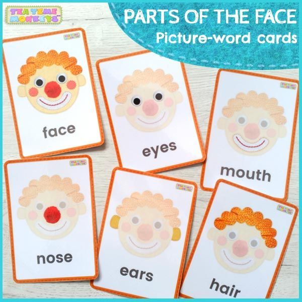 graphic regarding Free Printable Eyes Nose Mouth called Pin upon Flashcards