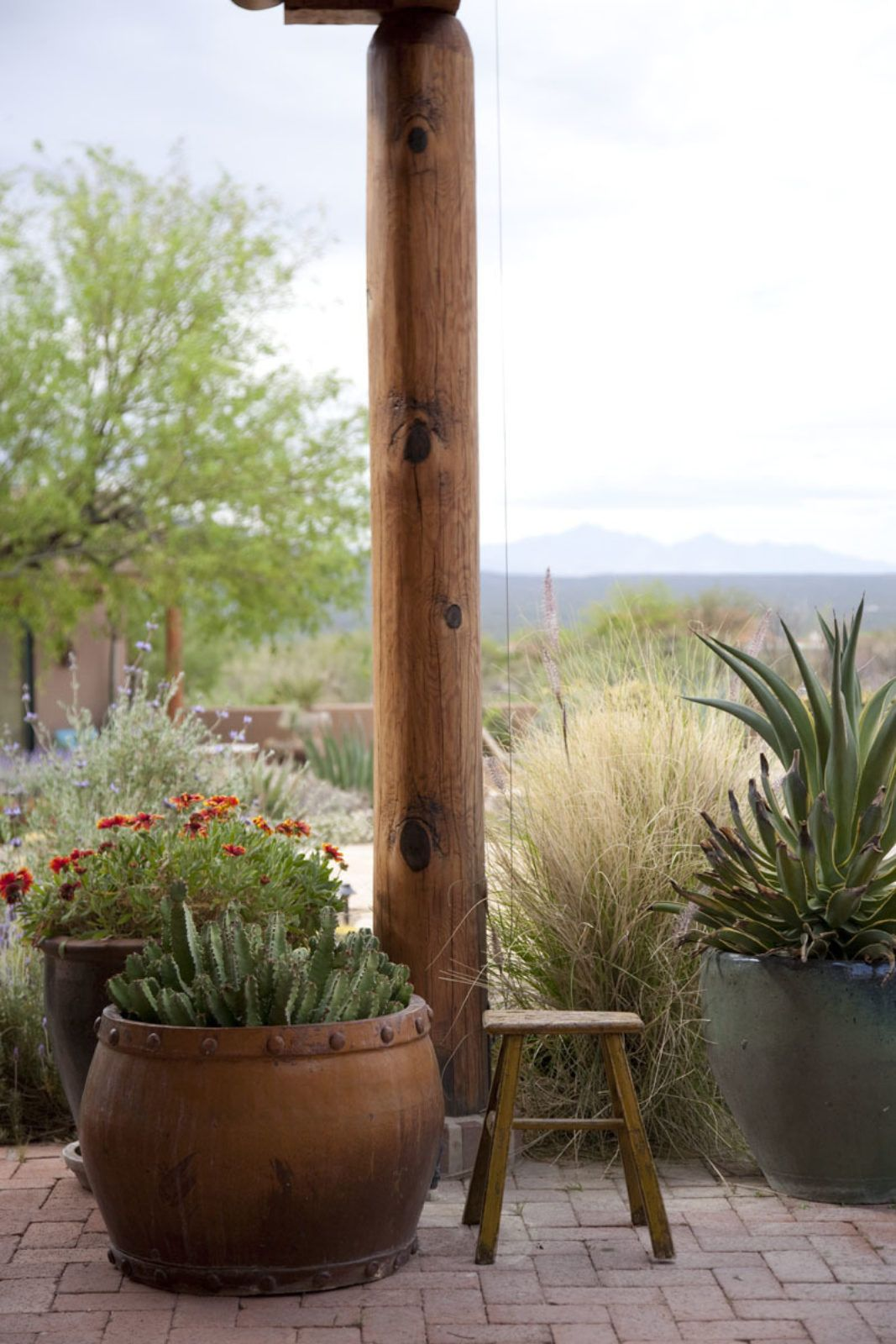 Artisan Desert Retreat Boxhill Design Southwest Landscaping Arizona Landscape Design Desert Landscaping