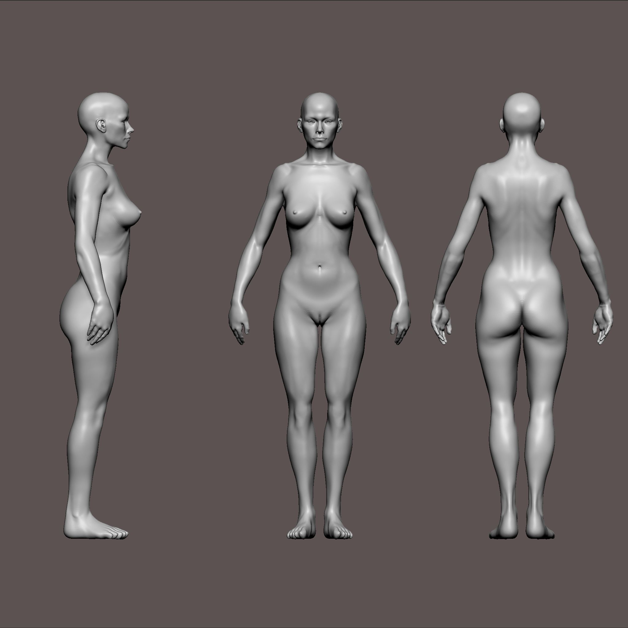 woman anatomy | UArtsy | 인체 Anatomy Reference Collection ...