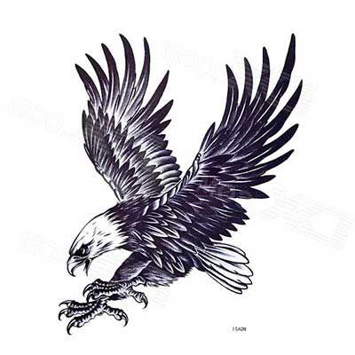 ceff384ae9 As Tatuagens de Águia são uma das preferidas dos homens e vem ganhando mais  adeptos femininos ao longo dos anos. Quando bem traçada