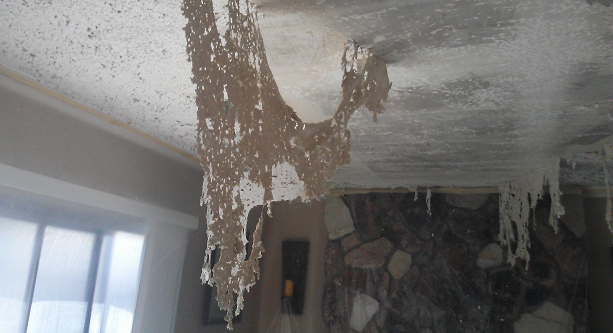 Welcome To Acoustic Removed Here You Can Find The Acoustic Removal Services And Popcorn Ceiling Service At Th Removing Popcorn Ceiling Popcorn Ceiling Ceiling