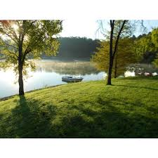 Nolin River Lake- Dog Creek Campground in Cub Run, KY