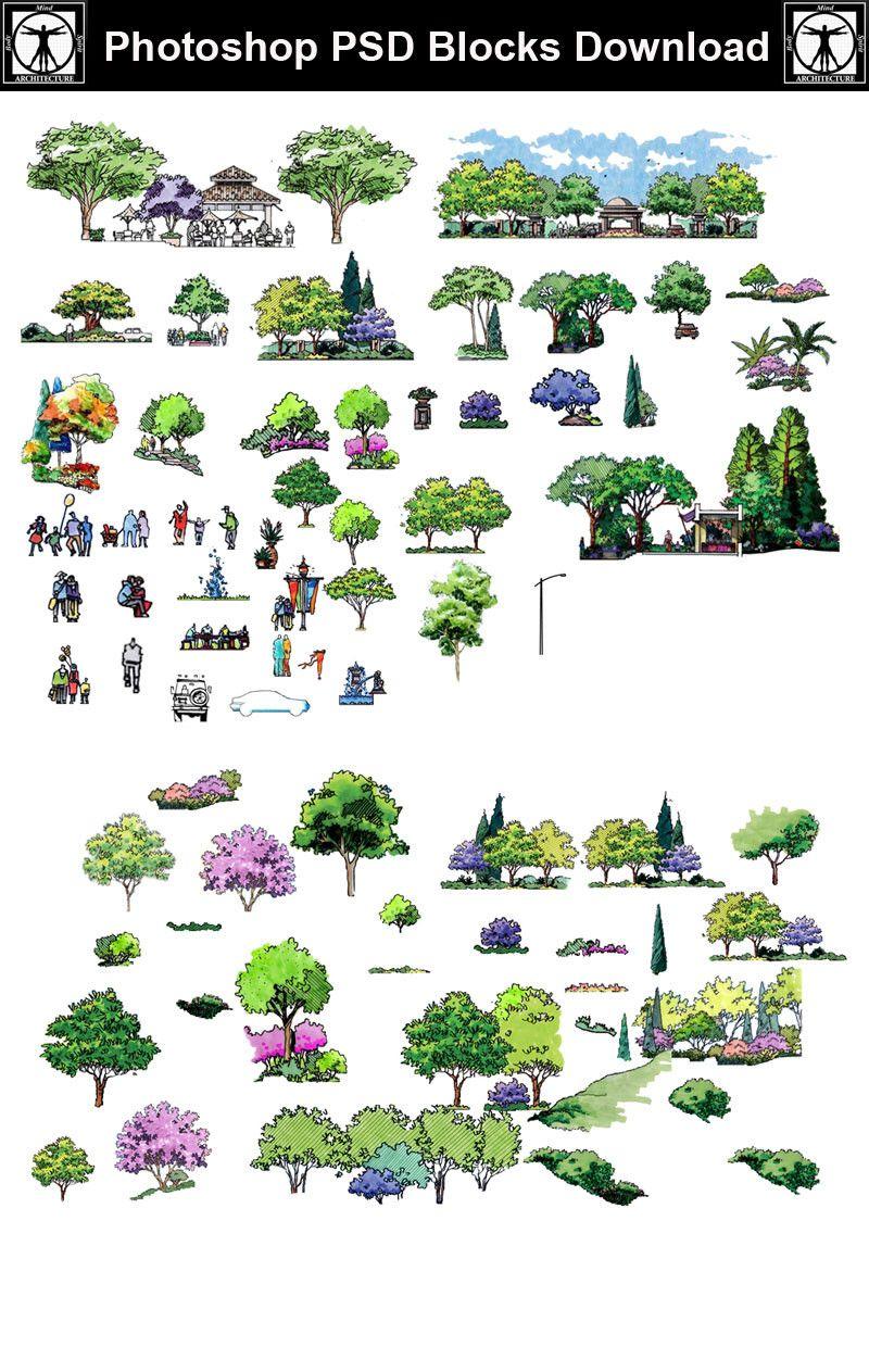 Hand-painted PSD Landscape Elevation 5 – CAD Design