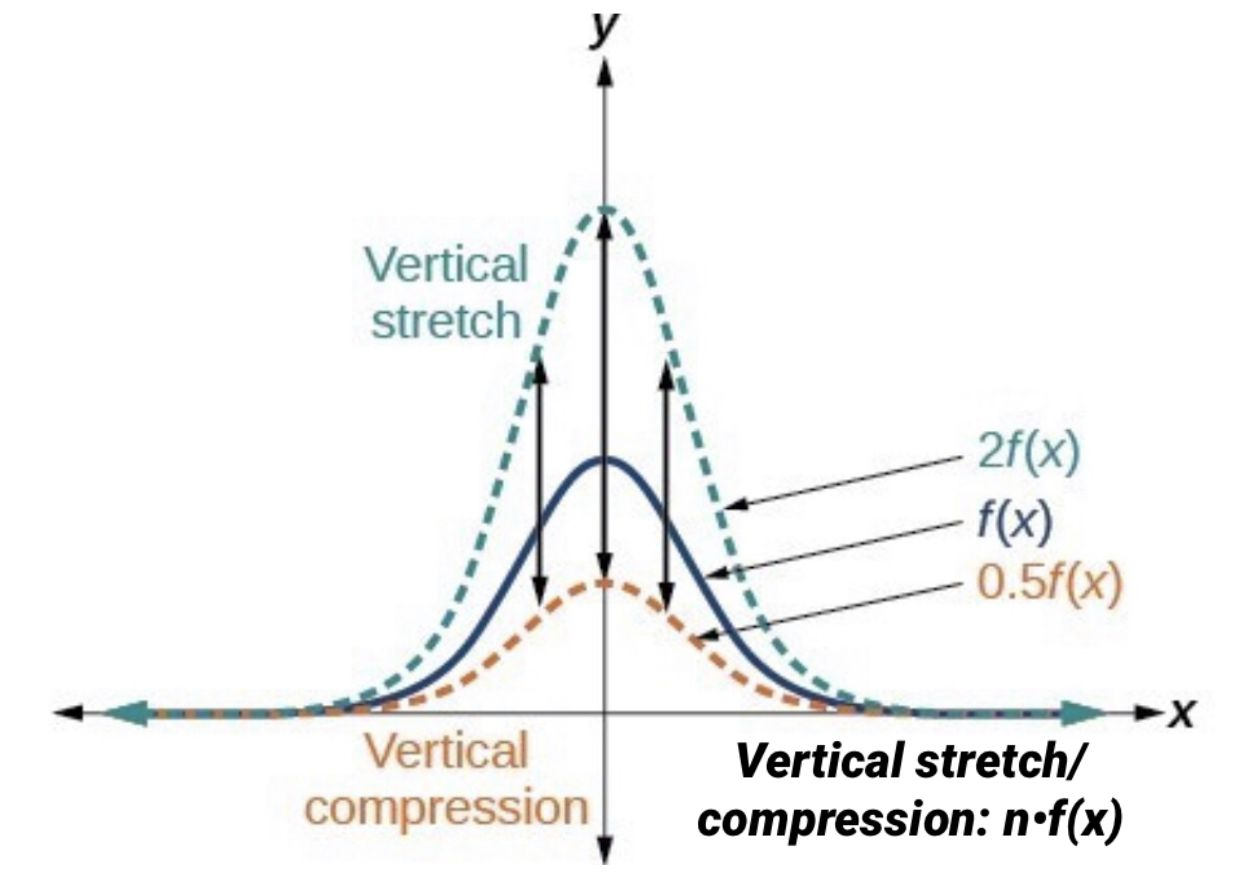 Vertical Stretch Compression