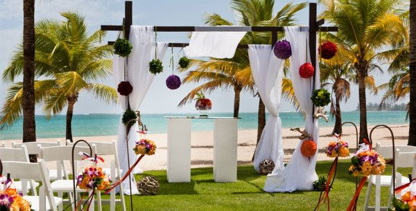 Puerto Rico Wedding Beach Package Courtyard By Marriott Isla Verde Resort Gorgeous With Palm Trees And Flowers