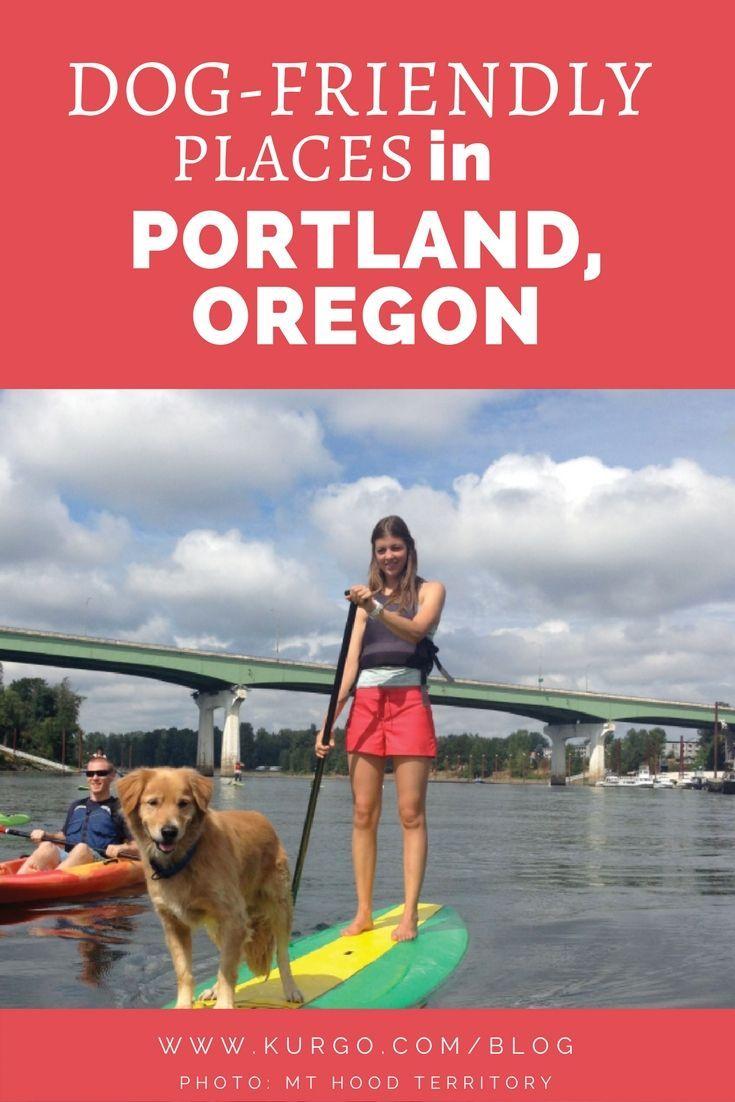 Pet Friendly Portland Oregon   Blog Posts   Portland oregon