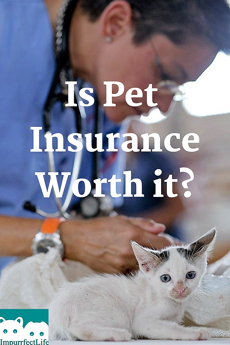 Is Pet Insurance Worth It Pet Insurance Pet Insurance Cost Pet Health Insurance