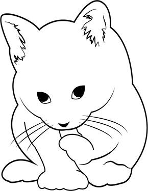 Ausmalbild Katzchen Ausmalbilder Katzen Katze Zum Ausmalen Katzen