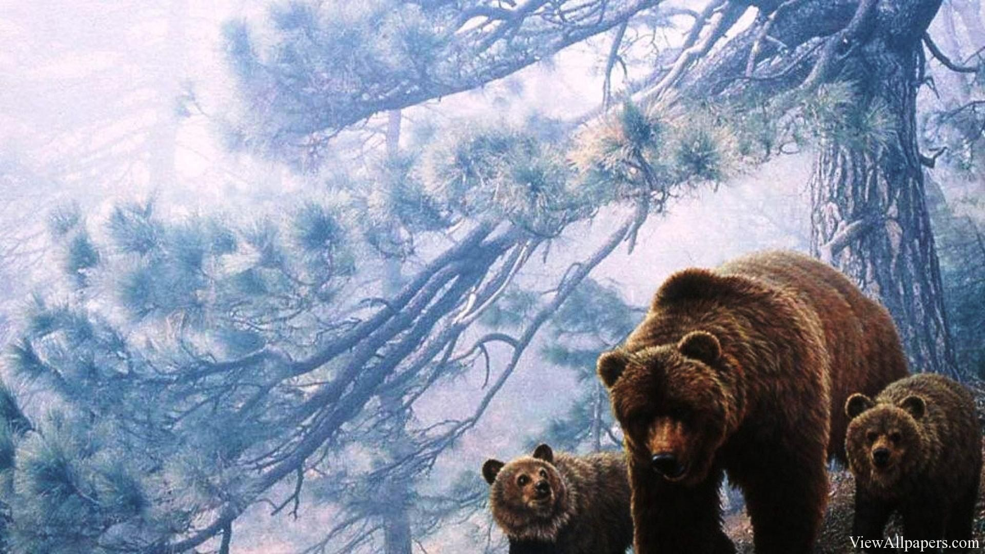 grizzly bears high resolution