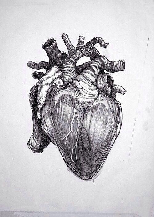Pin by Carolina Thurler on Tattoos & Illustrations | Pinterest ...
