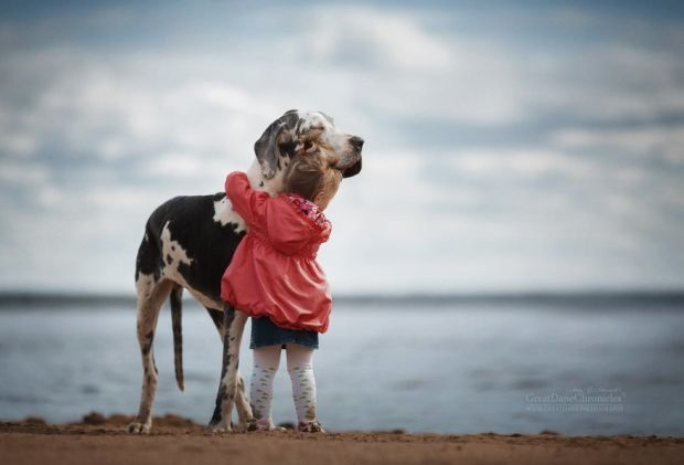 Tiny Children And Their Huge Dogs Photographed In Adorable - Tiny children and their huge dogs photographed in adorable portraits by andy seliverstoff